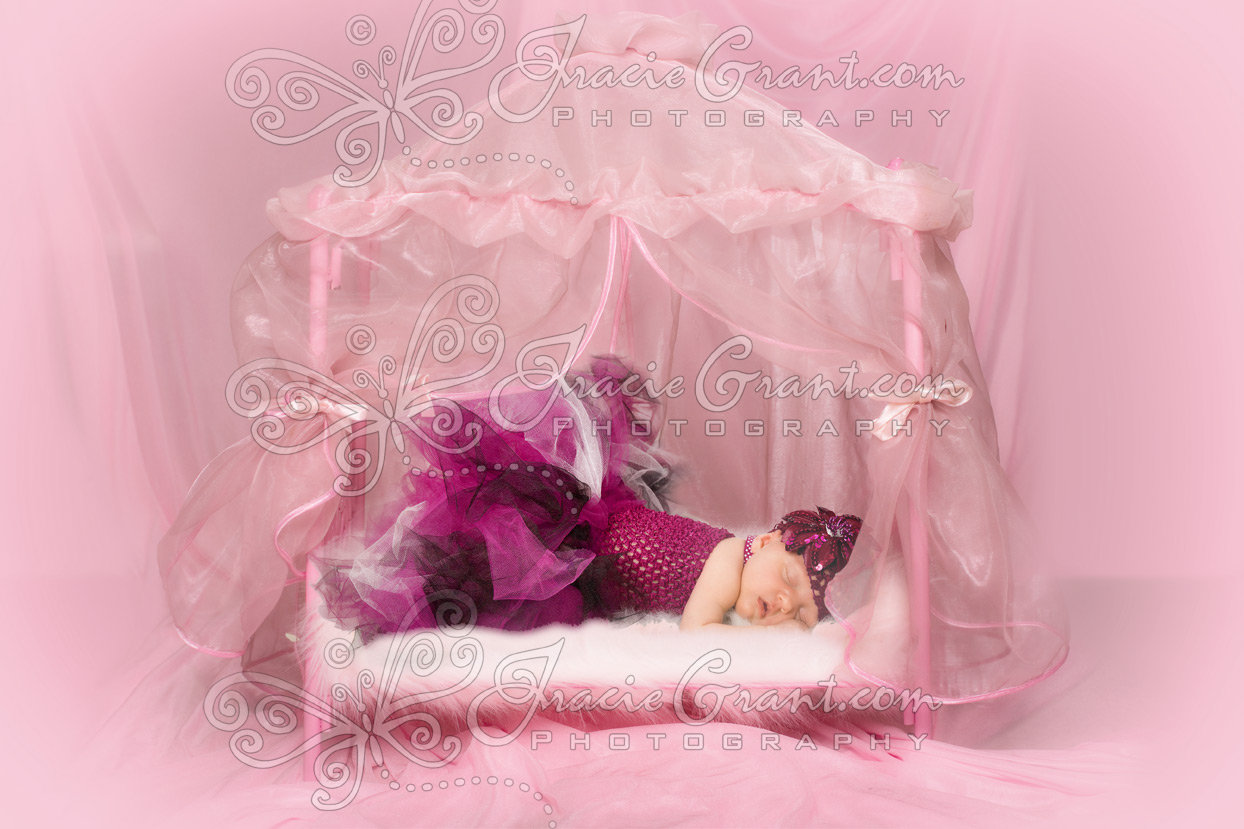 Pink Canopy Bed : Pink Canopy Bed : Little Girls Pink Canopy Bed