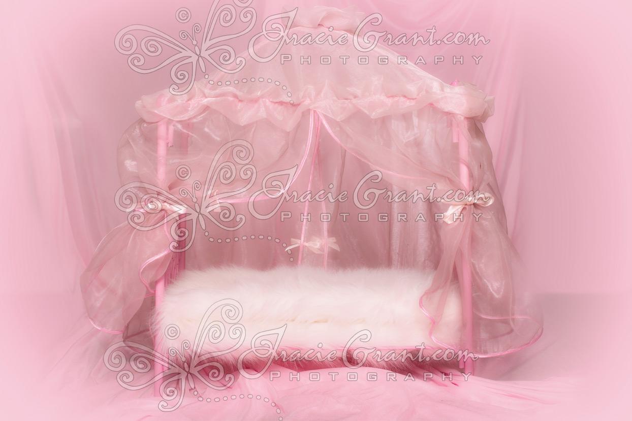 Newborn Girl Canopy Bed Closeup Pink Background